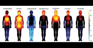 Emociones en el cuerpo